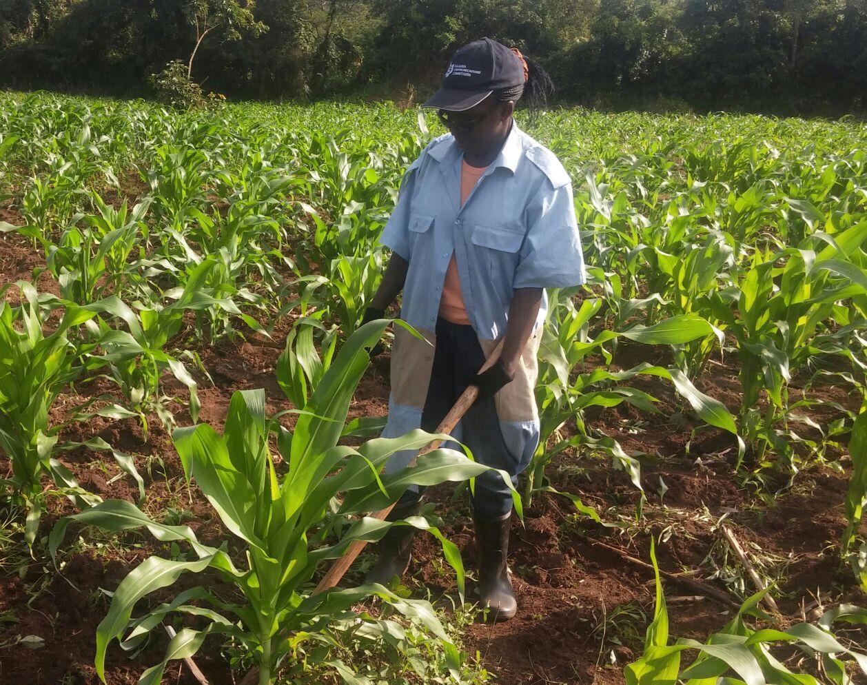 chances-for-children-uganda-charity-farm-4